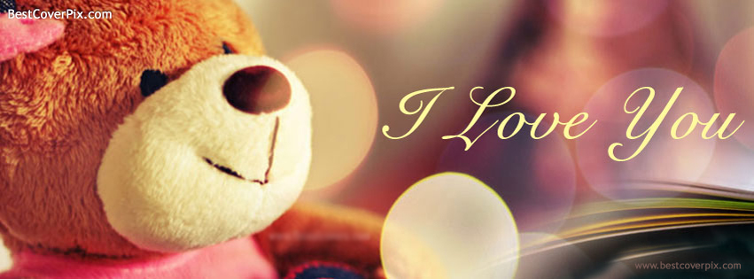 Cool Teddy Facebook Covers