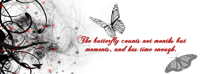 beautiful butterfly quote cover