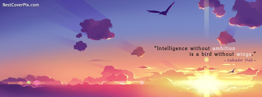 Intelligence Quotes Facebook Covers