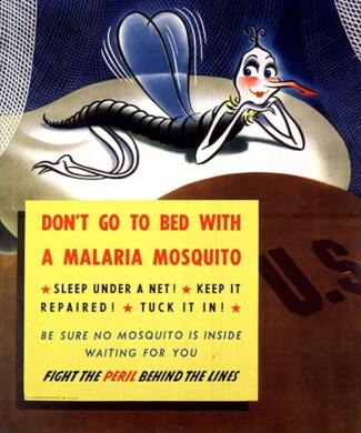 dont go to bed with malaria mosquito