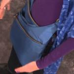 Travelon Purse blue)