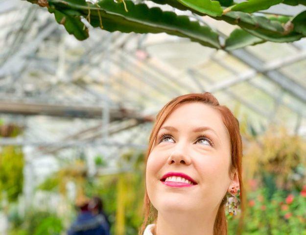 Indoor Garden Trip