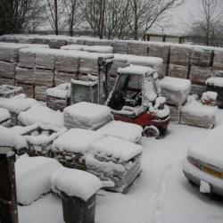 Front yard under snow