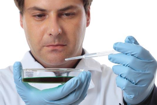 detox scientist
