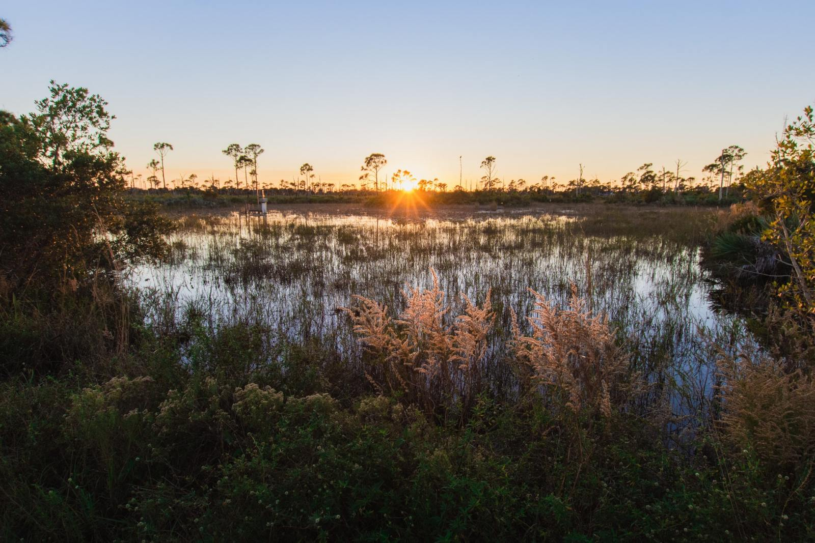 The Best Areas to Stay in Fort Pierce, FL