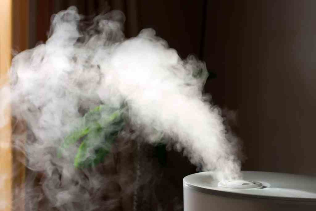 Humidifier spreading steam into living room