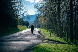 kelowna pet services walking a dog-min