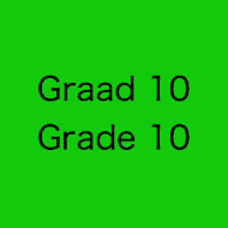 English and Afrikaans Grade 10 CAPS Exams and Memos