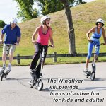 WingFlyer Z150 Review
