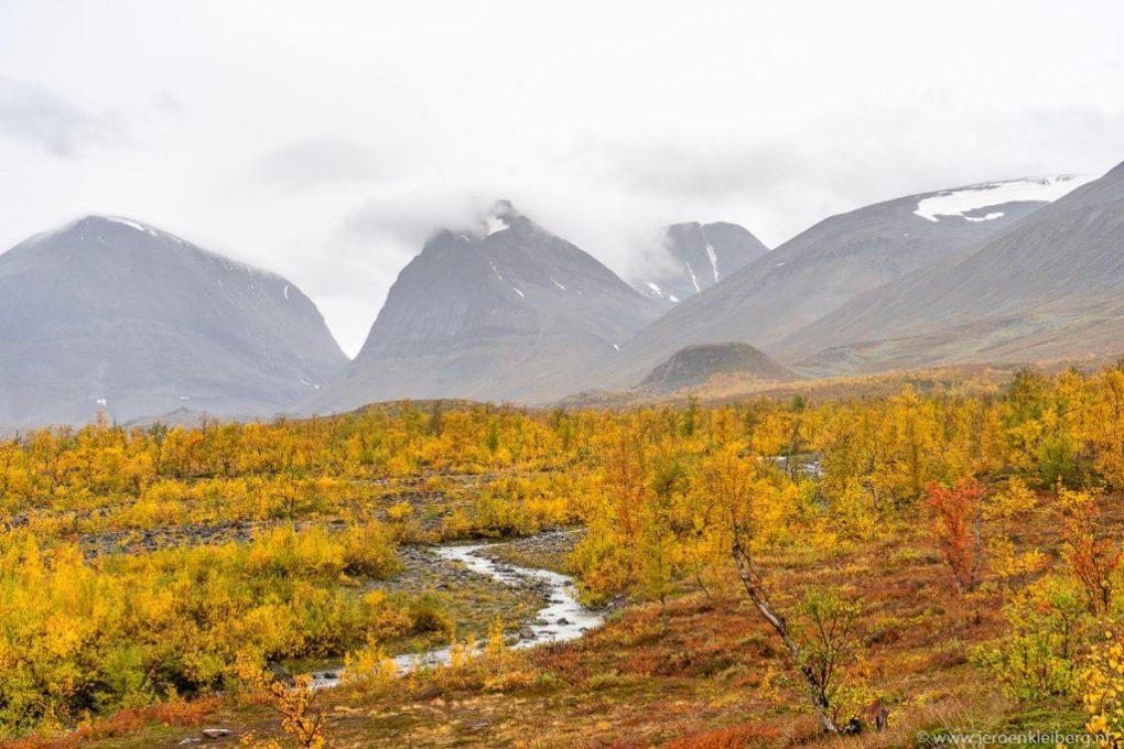 Herfstkleuren noord zweden