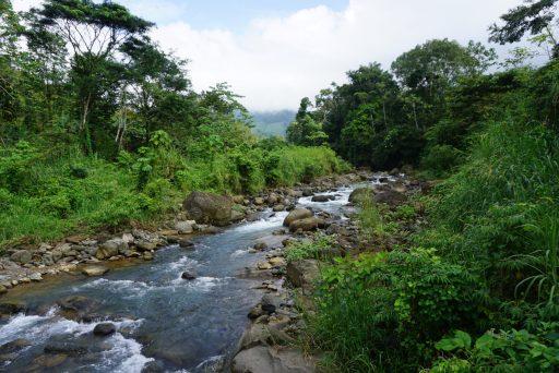 Verhuizen buitenland Costa Rica