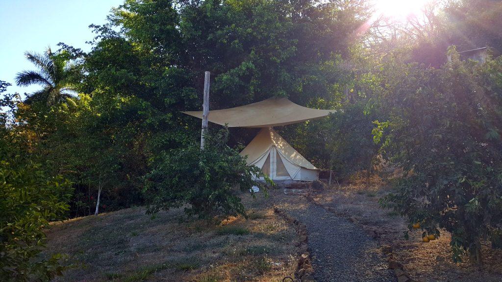 Hostel Alouatta