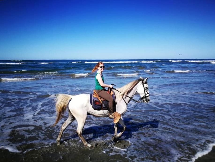 paardrijden costa rica
