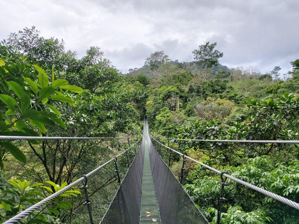 Hangbruggen Costa Rica
