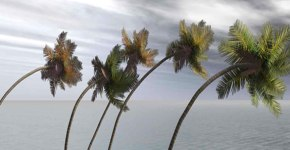 Caribbean Weather – Hurricanes and How to Minimize Vacation Disruptions