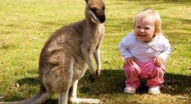 Where To Go For Great Family Vacations in Australia