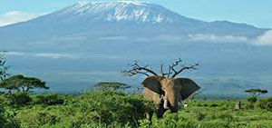 Kenya Family Vacations