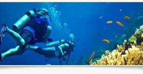 Where to Get All Inclusive Scuba Vacation That Is Most Enjoyable