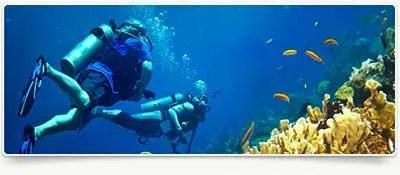 Scuba-Diving-Beaches