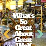 What's So Great about Great Wolf Lodge Resorts?