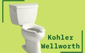 kohler wellworth