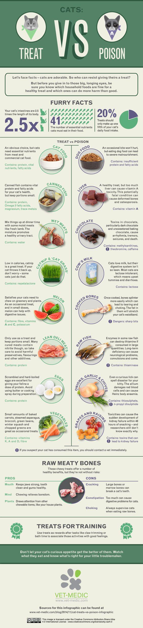Treat vs poison cat infographics