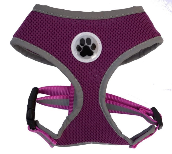 Padded Reflective Mesh No-Pull Cat Harness