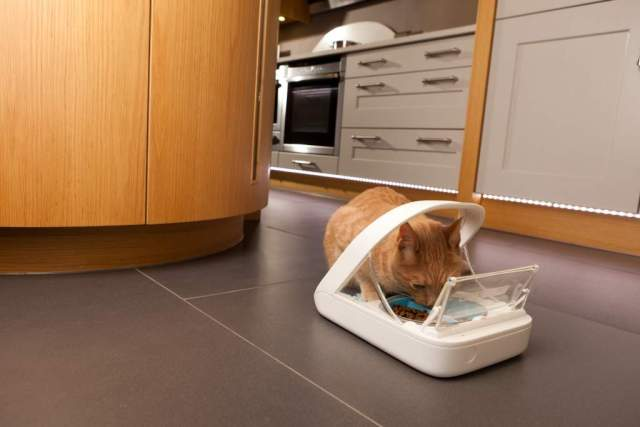 SureFeed Microchip Pet Feeder
