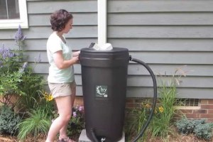 10 Best Rain Barrel Reviews