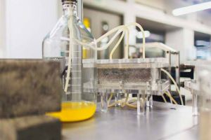 Recycled urine for future fertilizers