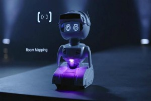 The Future of Social Robotics Assistance or Monitoring