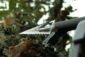 best cheap crossbow broadheads
