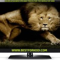 Install Lions Den Kodi Addon repo - Movie Addon