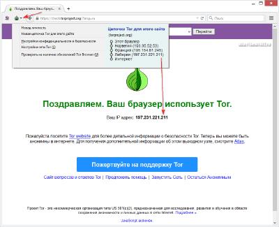 tor browser bundle и torrent gydra