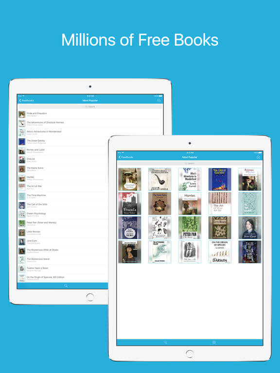 Download ePub for iPad