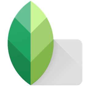 Snapseed for iPad Free Download | iPad Photography