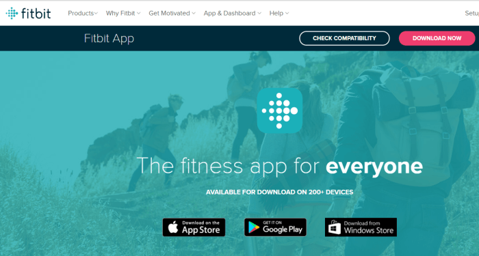 Download Fitbit App for iPad
