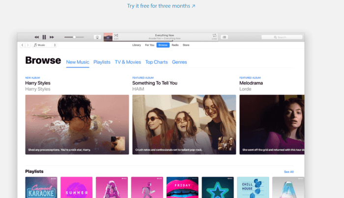 Download iTunes for iPad
