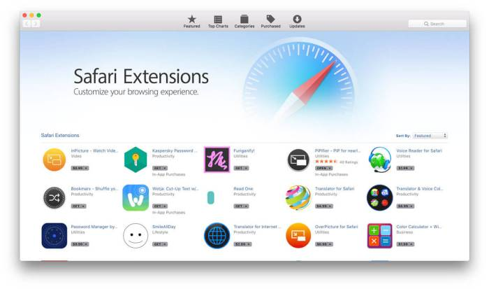 Download Safari Browser for iPad