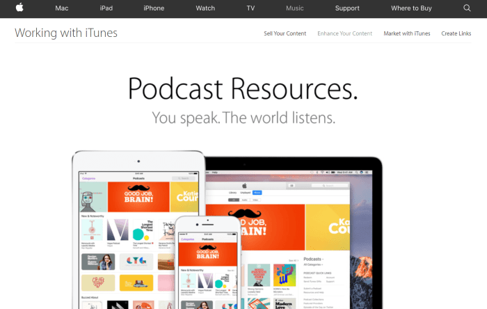 Download Podcast for iPad