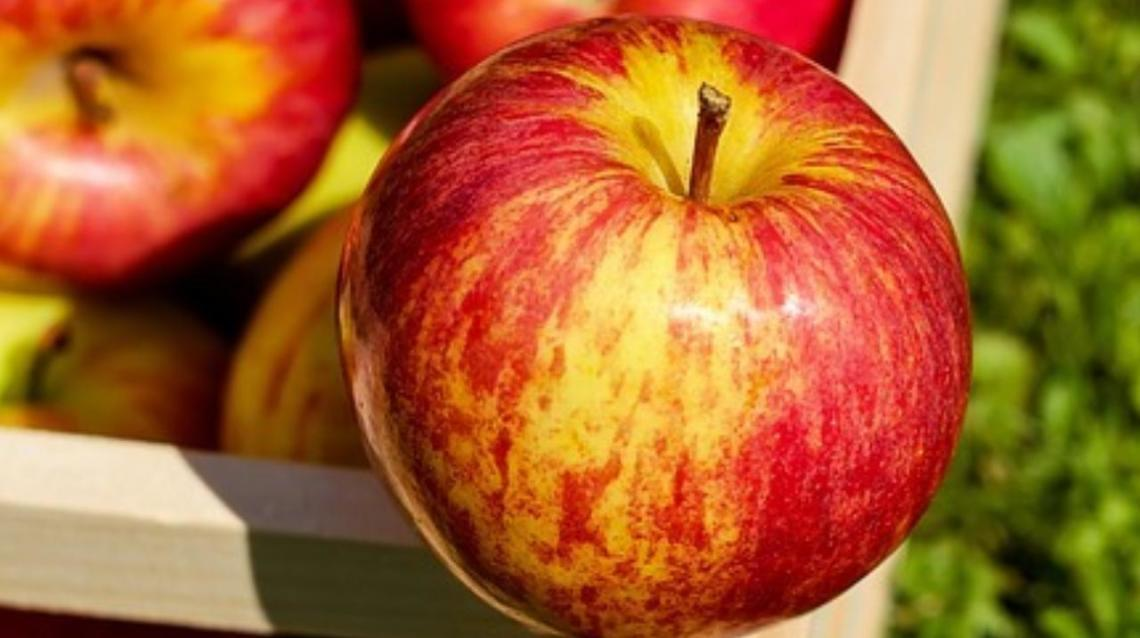 Best Fruits to eat during fever Apple - Best Fruits to eat during fever