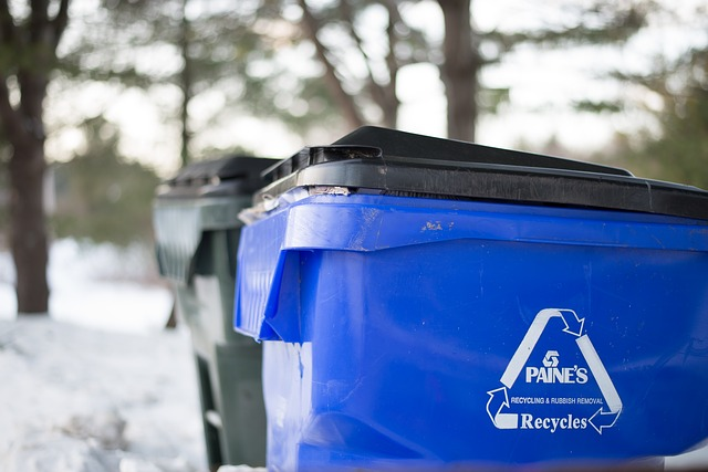what to put in a recycling bin