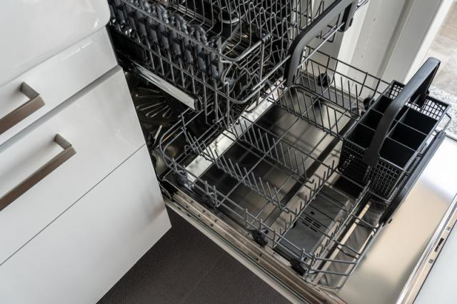 dishwasher garbage disposal
