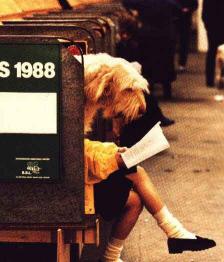Собачья жизнь от А до Я - Анекдоты о собаках