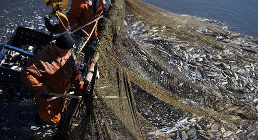 European Union Threatens To Ban Fish From Ghana
