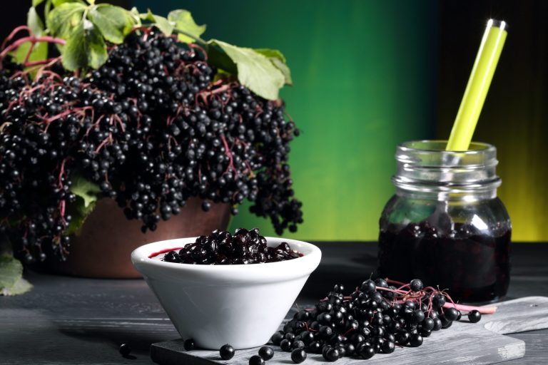 Elderberry in a bowl next to an elderberry jelly jar on a table with fresh picked elderberry