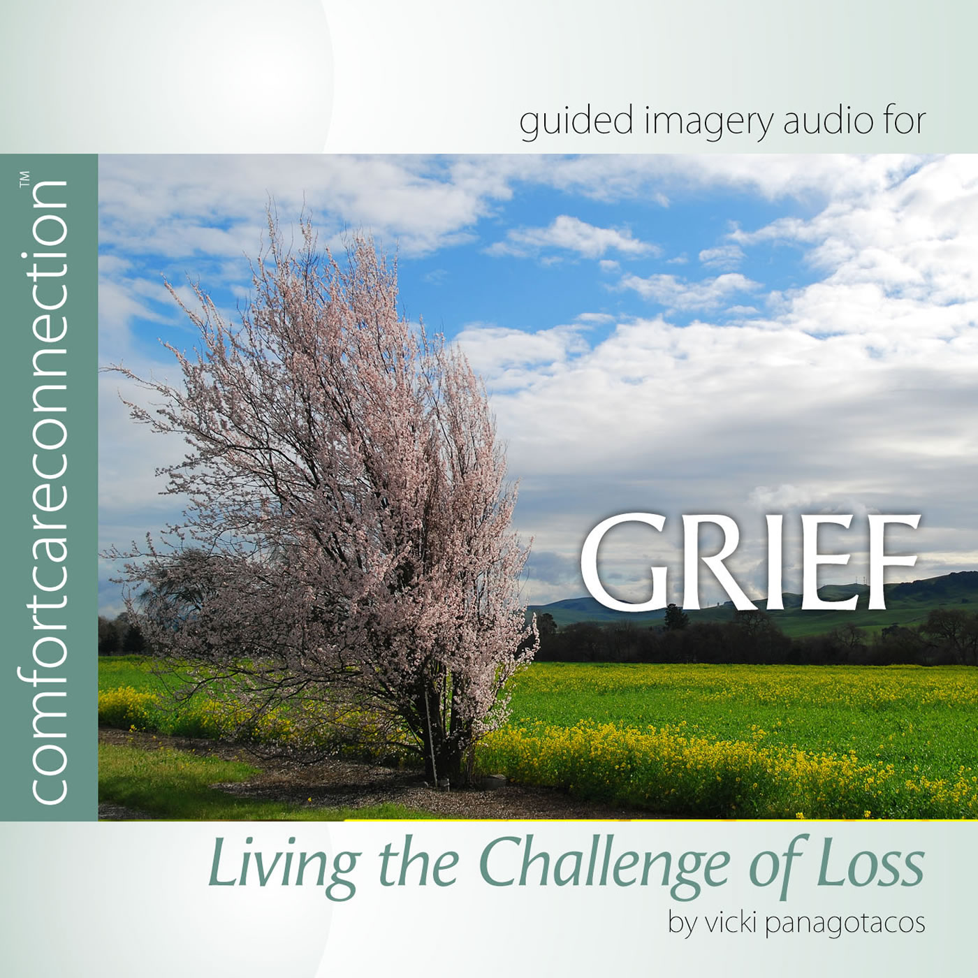 Grief: Living the Challenge of Loss
