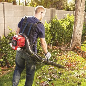troy-bilt-tb2bp-ec-backpack-blower-5