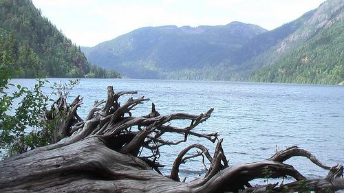 Cameron-Lake