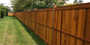 Cheapest way to build a Privacy Fence | Best Home Gear